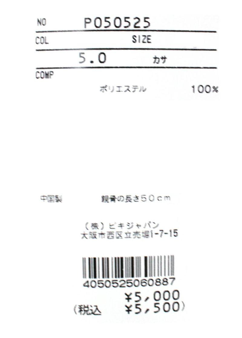 studiopicone-スタジオピッコーネ- P050525 カサ